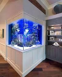 Aquarium Interior Design Ideas 55 Wondrous Aquarium Design Ideas For Your Extraordinary