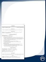 cv template curriculum vitae template and cv example share basic curriculum vitae template