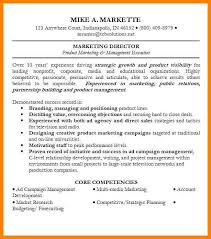 professional summary for resume professional summary for sales
