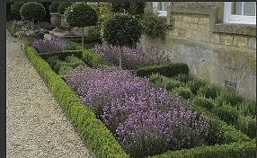 garden designs elegant parterre vegetable garden design parterre vegetable garden design