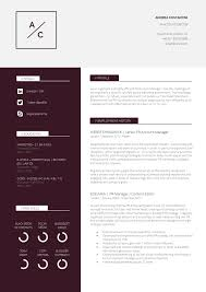 Resume Layouts The Professional Layout Format Download For