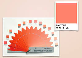 Salmofan Color Chart Pin By Chief Home Design Chiefhomedesign On Color Alert