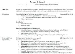 Build My Own Resume For Free Best Of Build My Own Resume Build My Resume How To Make A Perfect Example