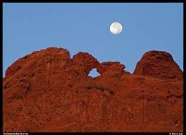camels garden. Plain Camels The Kissing Camels Under A Full Moon Inside Garden L