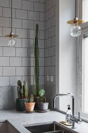 upper kitchen cabinets pbjstories screenbshotb: indoor plants a cacti cluster on the kitchen counter for a touch of green