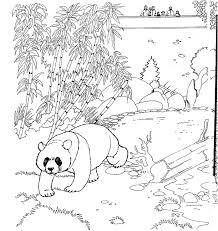 Kids N Fun Kleurplaat Dierentuin Panda Beer