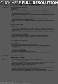Payroll Skills For Resume Resume Work Template