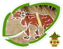 history of pongal pongal history history of pongal festival history of pongal