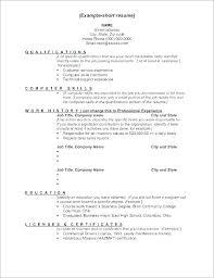 Example Of Work Resume Fascinating Sample Resume Computer Skills Computer Skills Resume Sample Examples