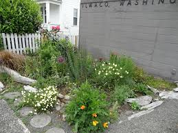 Office gardening Garden Design Ilwaco Post Office Garden Gardenista 20 May Mostly Weeding Tangly Cottage Gardening Journal