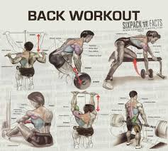 Back Exercises Gym Chart Best Back Workout Routine Best Laptop