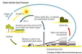 Carbon Cycle Flow Chart 3 Power Technology Energy News And Market Analysis