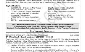 Military Resume Writing Services Resume Template