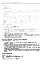 Vocational Rehabilitation Counselor Resume