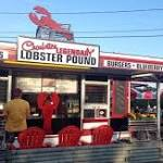 Maine investigating restaurant that sedated lobsters with marijuana