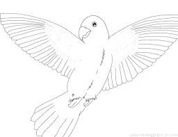 Bird Coloring Pages To Print Free Coloring Pages Birds Angry Birds