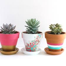 DIY painted terracotta pots An easy project for an idle afternoon. Color  and pattern options are endless! Fill with your favorite succulent, herb,  ...