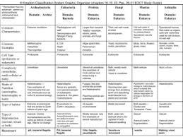 Domain And Kingdom Characteristics Chart Worksheet Best