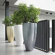 modern office plants. Corporate Office Planters Modern Plants