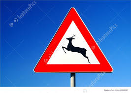 Traffic Signs Warning For Animals A Traffic Sign For Deer Pass With Background
