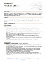 Customer Service And Sales Resume Inspiration Sales Leader Resume Samples QwikResume