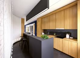 Long Narrow Kitchen Matte Black Kitchen Counter Interior Design Ideas