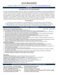 Inside Sales Resume Objective Inside Sales Resume Summary Examples Rep Consultant Job Description 24