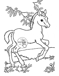 Small Picture Cute Baby Horse coloring page for kids animal coloring pages