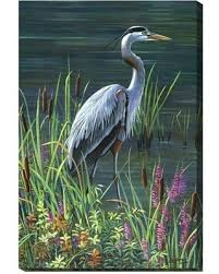 heron canvas wall art great blue heron right  on heron canvas wall art with find the best deals on heron canvas wall art great blue heron right
