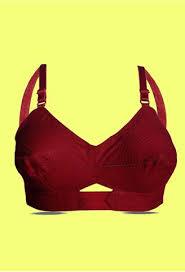 Angelform Bra Size Chart Angelform Varnajalam Priyasajani Maroon Womens Lingerie Cotton Bra