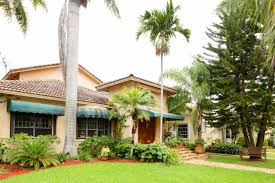 winter lawn care tips for florida