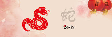 Image result for snake chinese zodiac