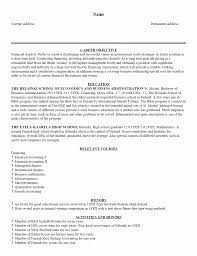 Resume Introduction Example Resume Introduction Examples Staruaxyz 8
