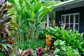 Small Picture sub tropical garden ideas Google Search Tropical Garden