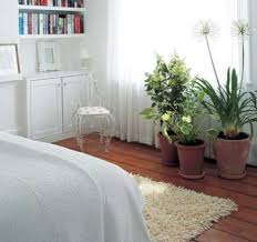 Living Design: How to Decorate with Plants - Green Homes - Redecorating -  Decor/Design Principles - Natural Home & Garden