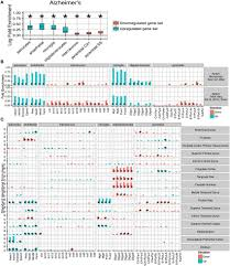 frontiers identification of vulnerable cell types in major brain org