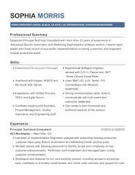 Aci Worldwide Principal Technical Consultant Resume Sample Newhall