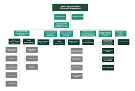 Csu Organizational Chart Portfolio Deputy Vice Chancellor Research And Engagement