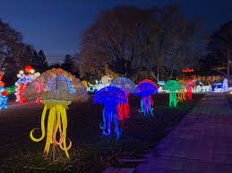 We Got Lights Staten Island Ny Nyc Winter Lantern Festival New Displays Light The Night