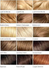 Blonde Hair Color Chart Silkscreening Me