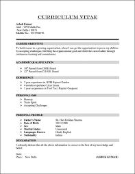 Curriculum Vitae Template Elegant Sample Format Professional Doc