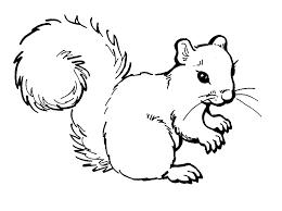Small Picture Free Printable Squirrel Coloring Pages For Kids