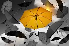 Umbrella Insurance Quote Umbrella DMA Insurance Seattle Bellingham 19