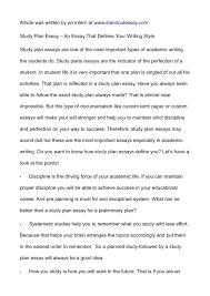 well written essay example com well written essay example 17 plan for success successful examples amandine mallen paris