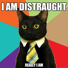 i am distraught really i am - Business Cat - quickmeme via Relatably.com