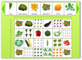Small Picture Perfect Vegetable Garden Design Drawing This Pin And More On Plans