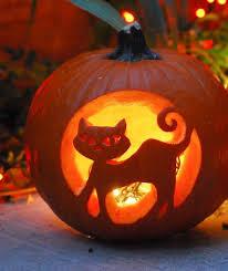 Cat Jack O Lantern Pattern New Inspiration