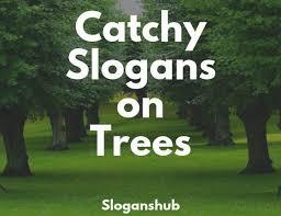 Largest Slogans Database On The Internet Slogans Hub