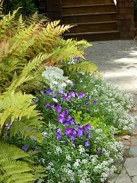 Garden Design Planter Installations Anne Cothran Garden Floral Interesting Wildflower Garden Design Gallery