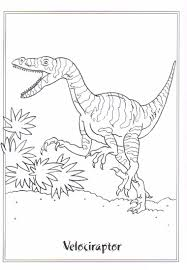 Small Picture Download Coloring Pages Velociraptor Coloring Page Velociraptor